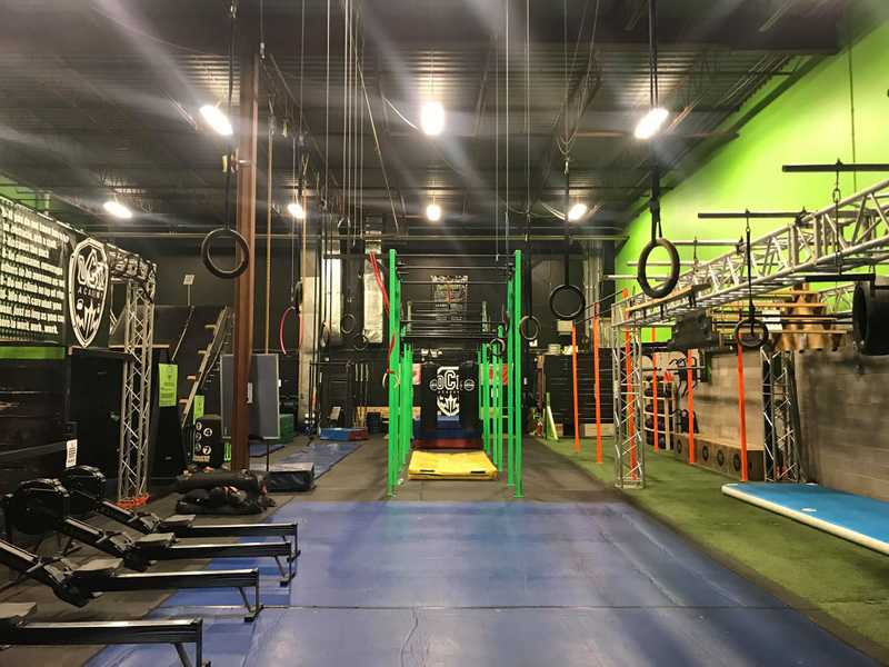 Tarzan Swing (Row of Rings)